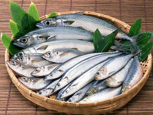 怎样鉴别带鱼质量优劣